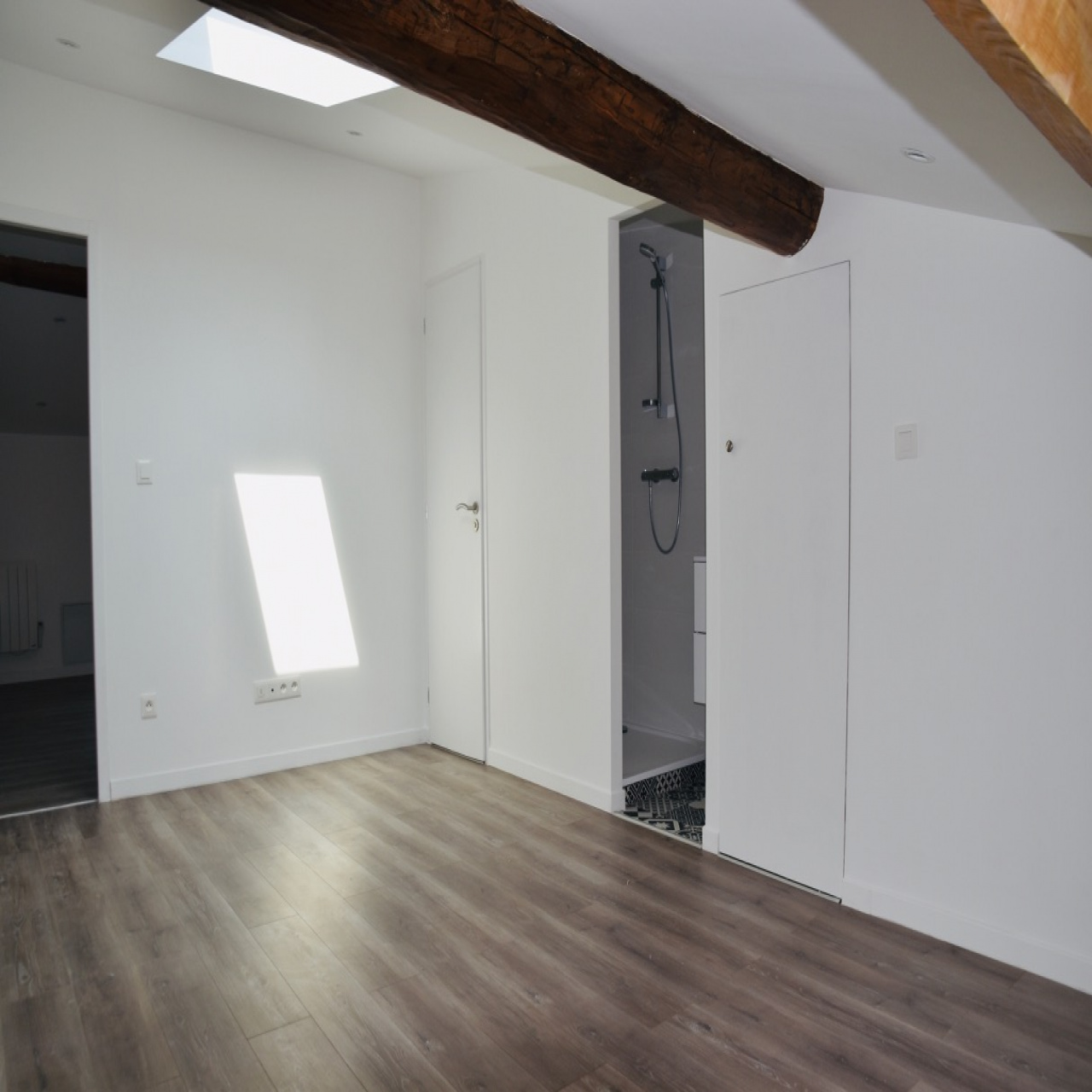 Image_5, Appartement, Toulouse, ref :DP572.1