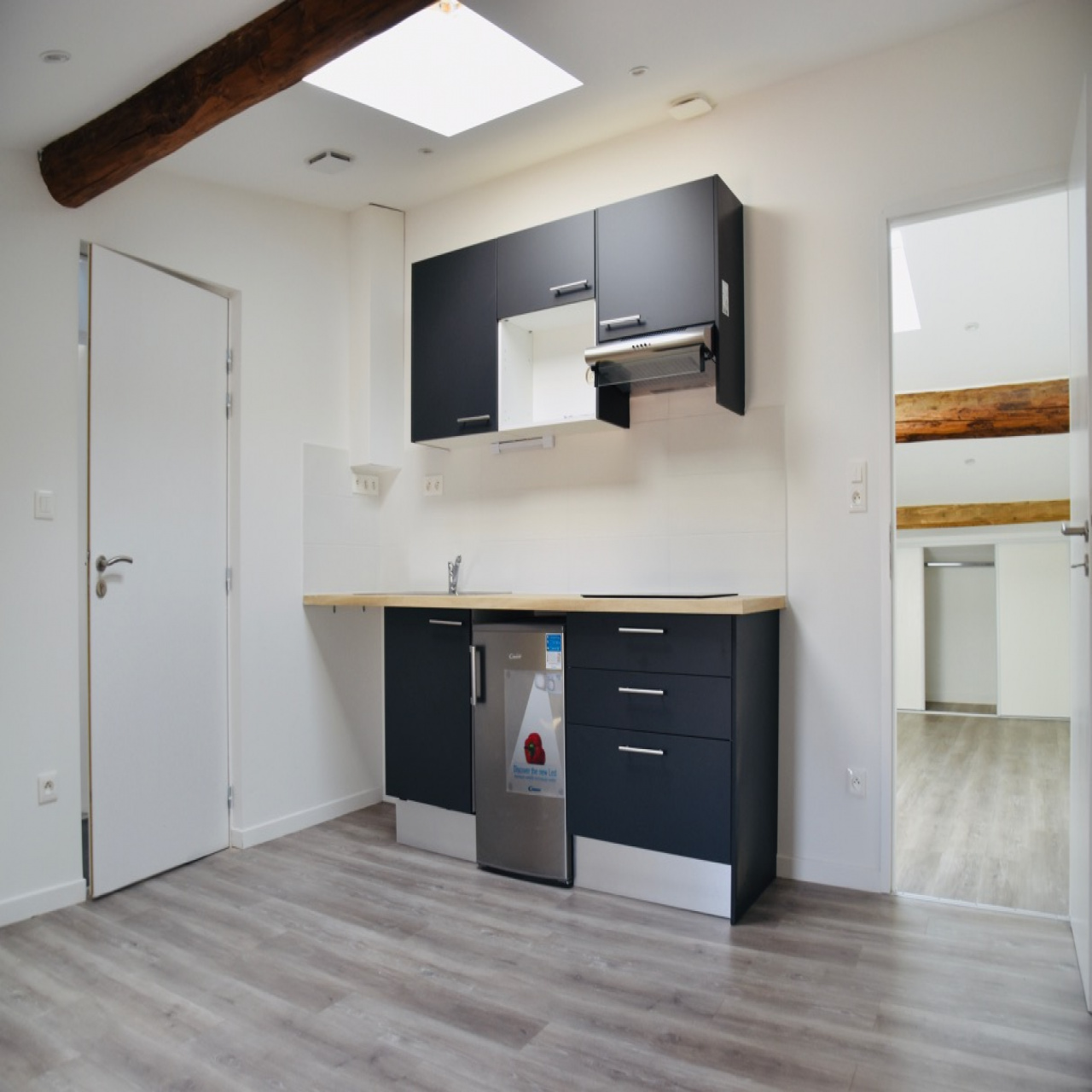 Image_1, Appartement, Toulouse, ref :DP572.1